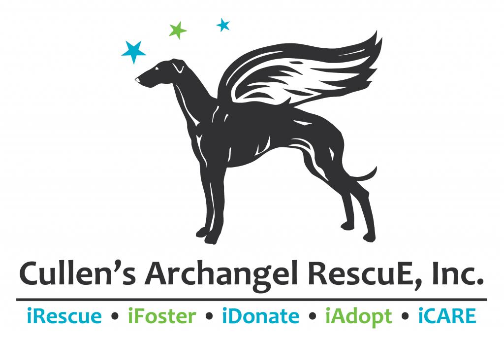 CARE Logo2